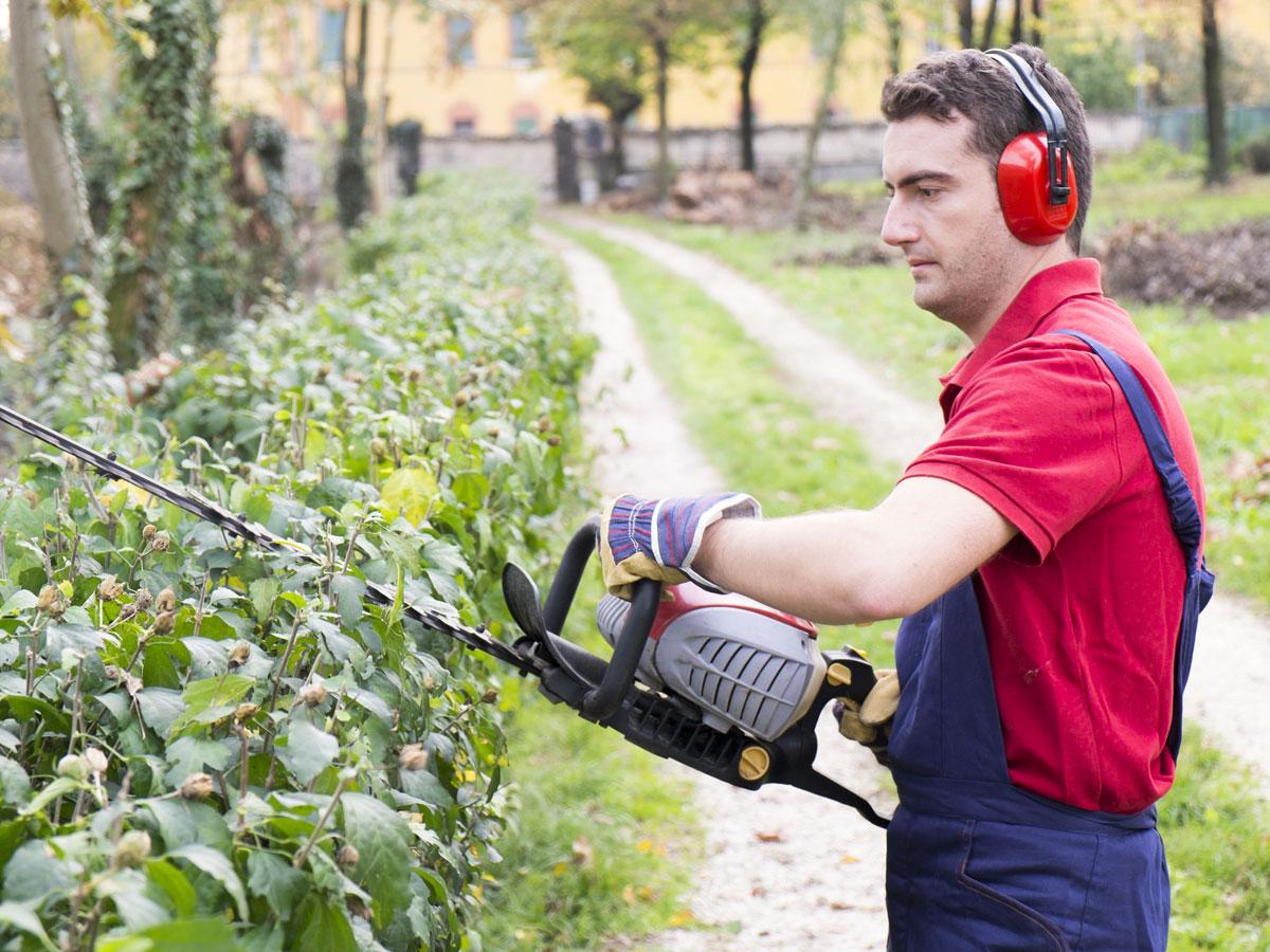 Giardiniere Lecco